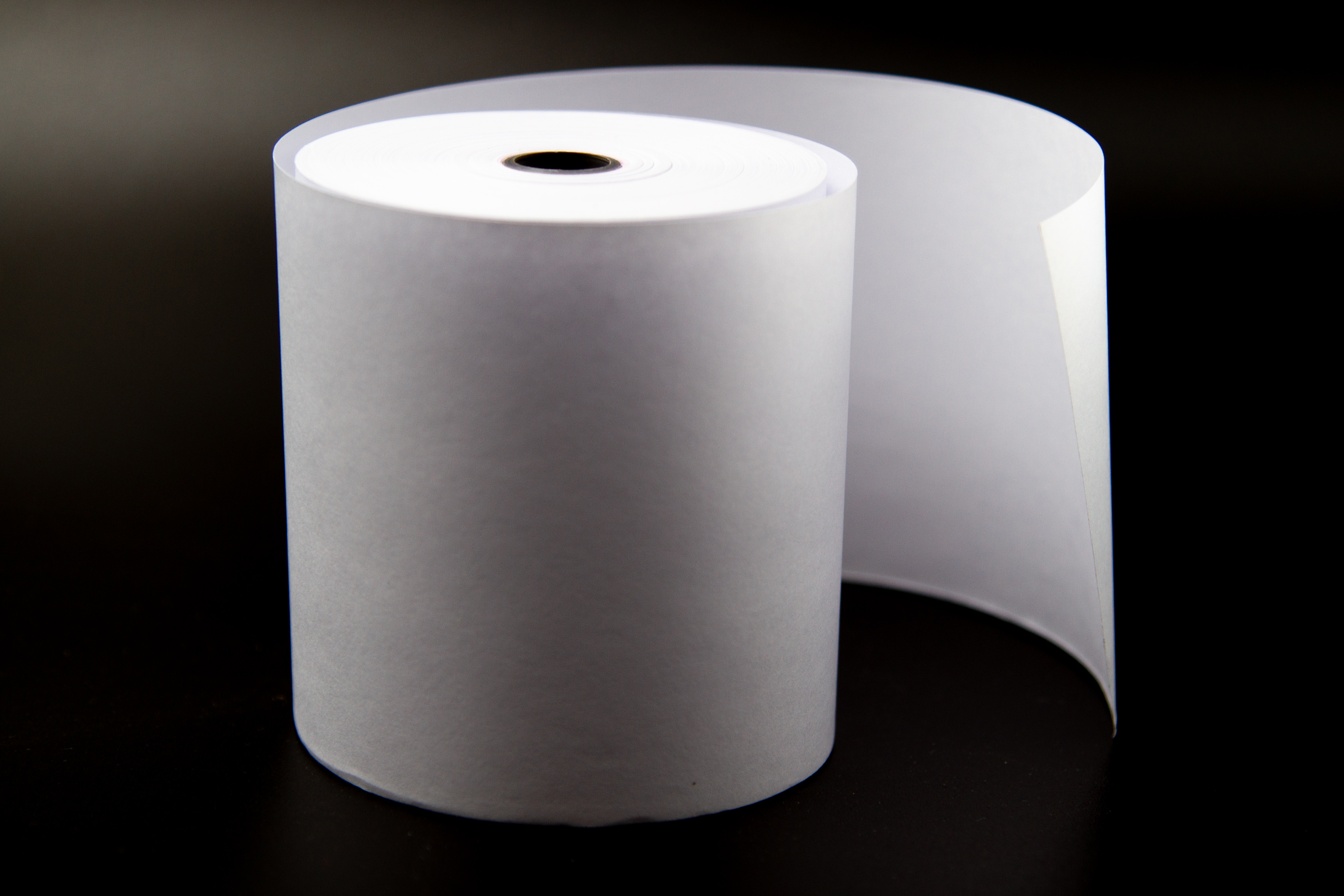 Receipt Paper 10 Rolls 3 1/8 x 230 for Epson Thermal Printer